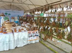 Chiang Mai Longan Festival: wer hat die Schönsten?