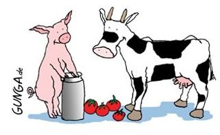 Gunga Kuh und Horsty